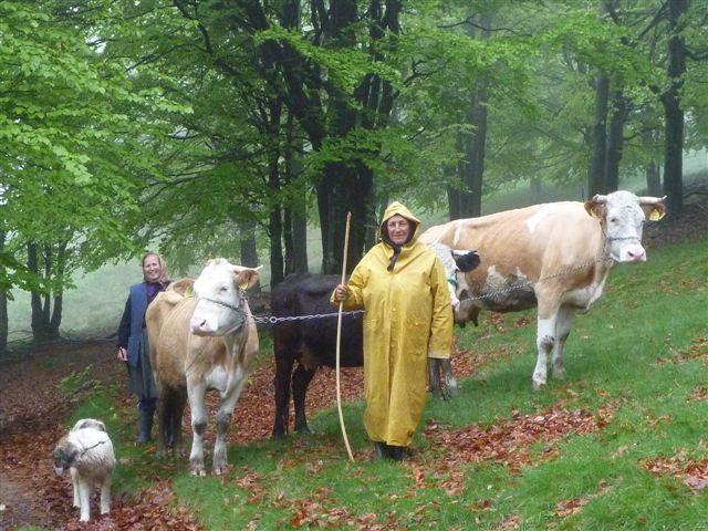Rumaenien-May-2010 (33)